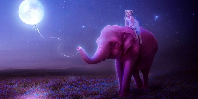 Pretty Girl Wallpapers Hd Little Girl On Pink Elephant Hd Latest Wallpapers