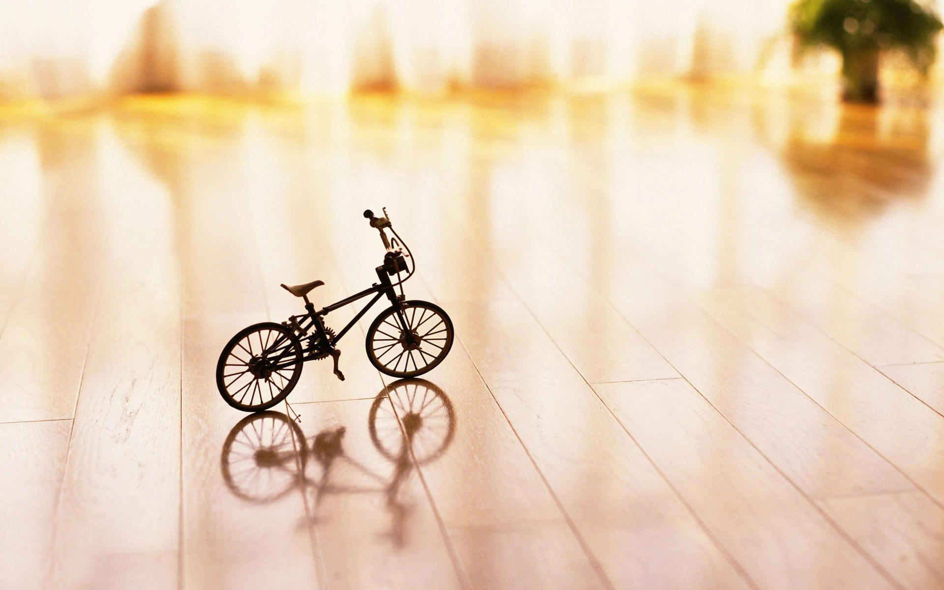 3d Wallpaper For Iphone 3gs Small Bicycle Prototype On The Wooden Ground Hd Wallpaper