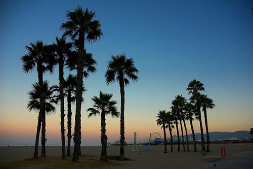 Good Evening Hd Wallpaper Santa Monica Beach Cams Live Cams Hdontap Hdontap