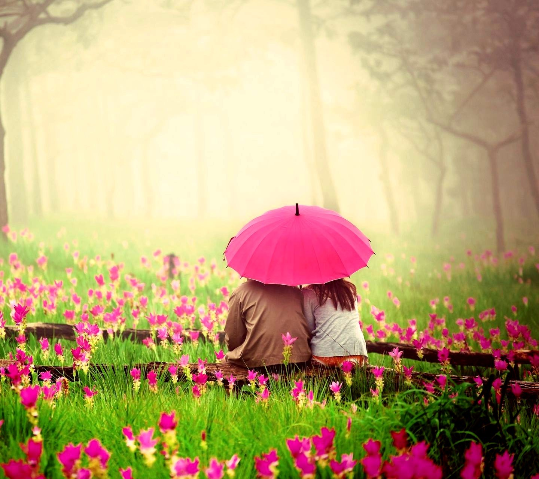 Cute Umbrella Wallpaper Love Couple In Pink Garden Hd Love 4k Wallpapers Images