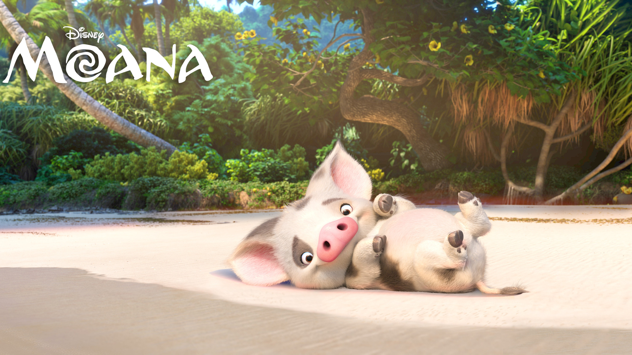 Cute Animated Wallpapers For Mobile 2048x1152 Pua Moana 4k 2048x1152 Resolution Hd 4k