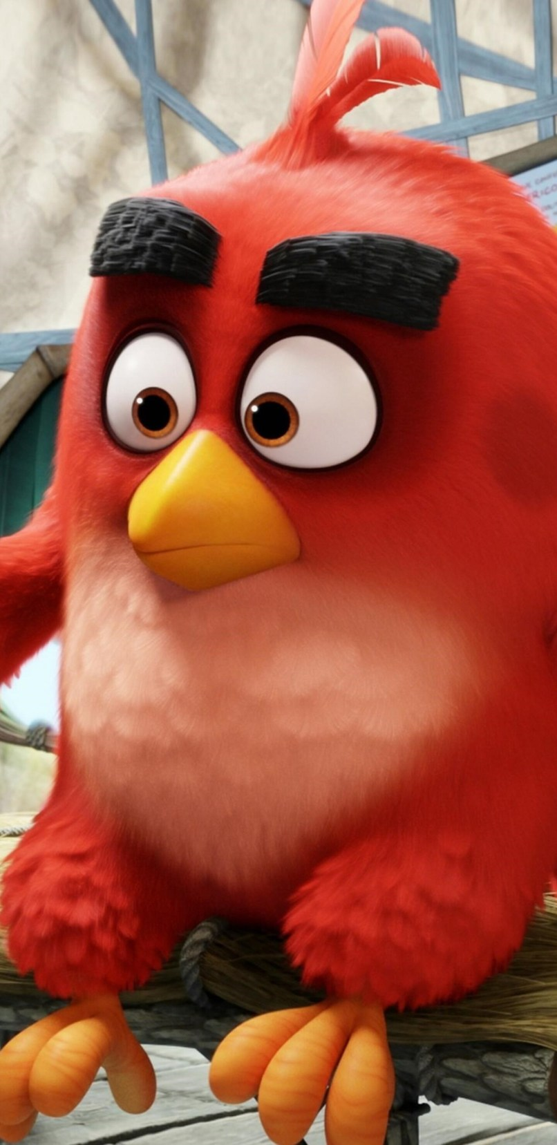 angry birds hd pics | babangrichie