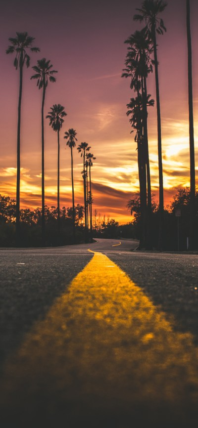 1125x2436 Road In City During Sunset Iphone XS,Iphone 10,Iphone X HD 4k Wallpapers, Images ...