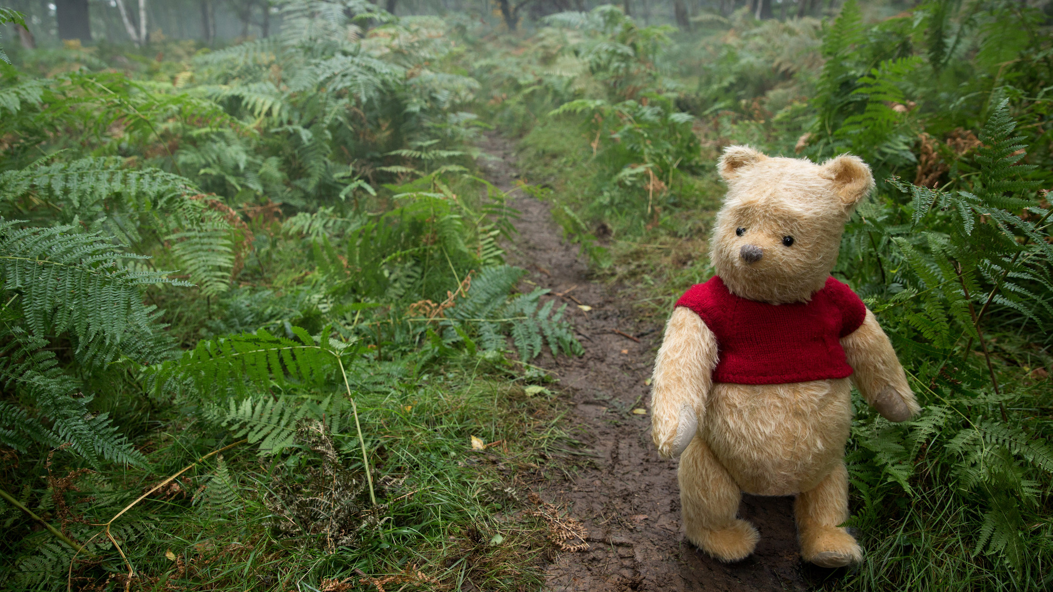 Cute Pooh Bear Wallpapers 2048x1152 Winnie The Pooh In Christopher Robin Movie 5k