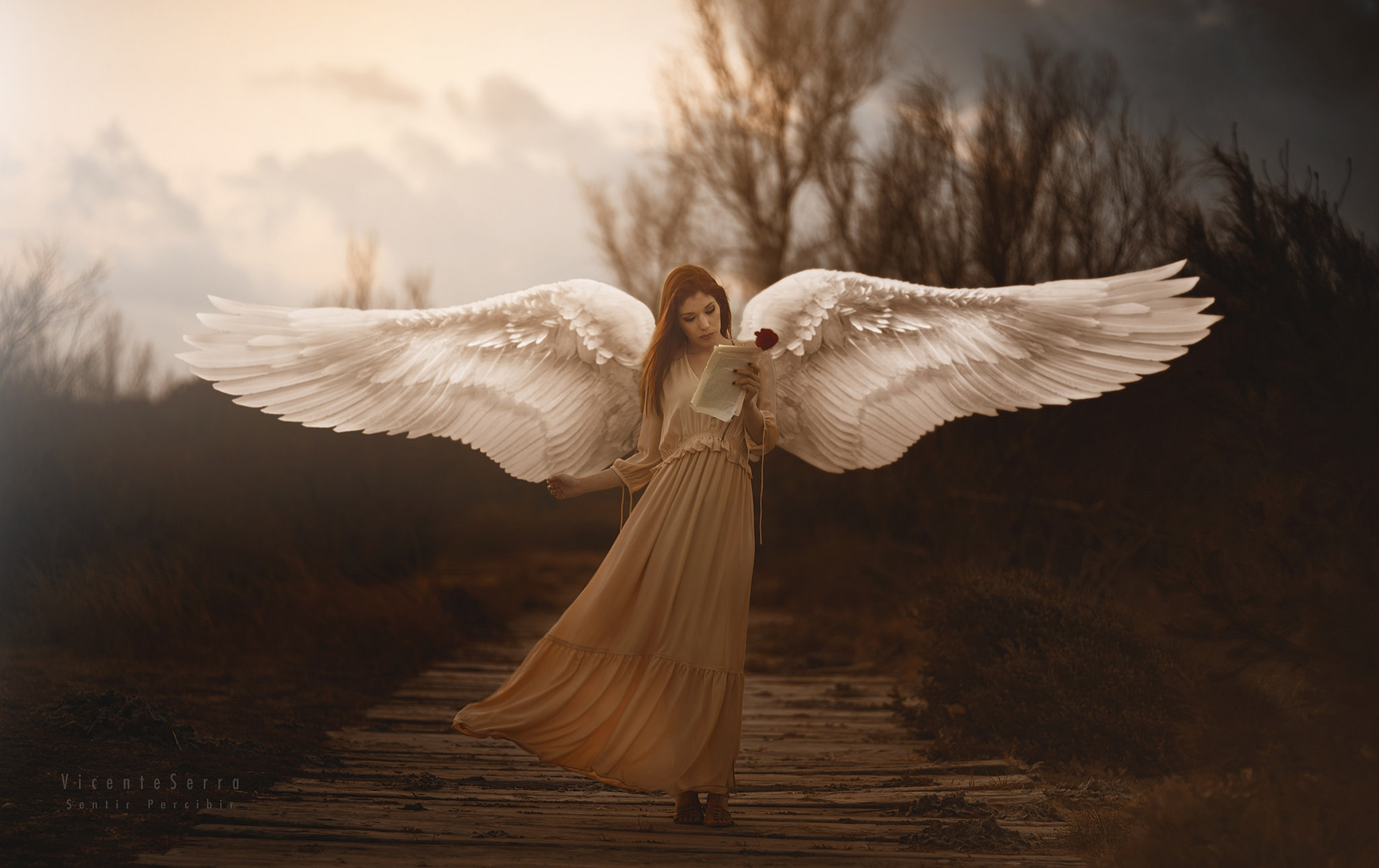 I Am Alone Wallpapers 3d Girl With Wings Angel Hd Girls 4k Wallpapers Images