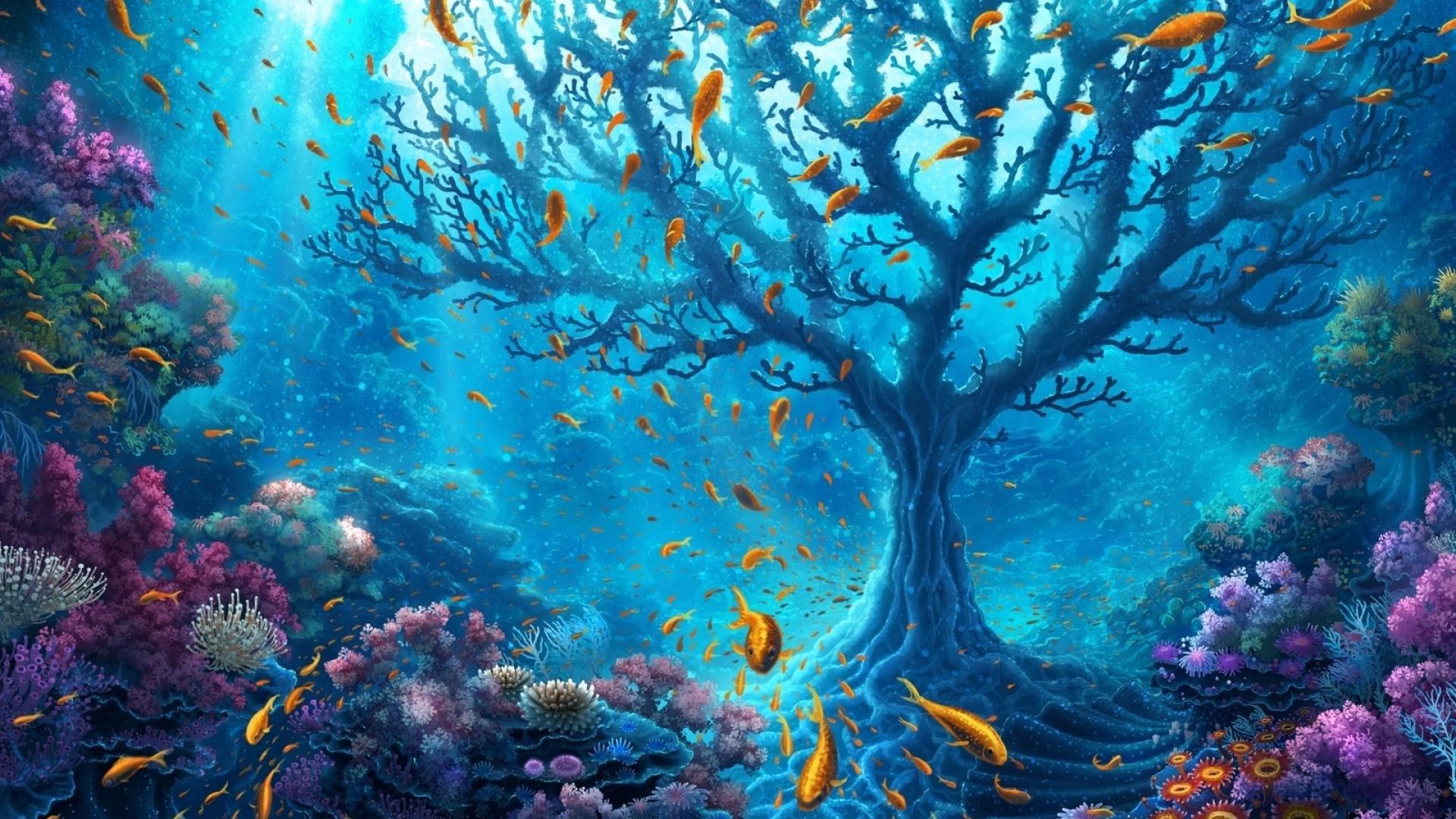 Fantasy Forest 3d Live Wallpaper 2048x1152 Underwater World 2048x1152 Resolution Hd 4k