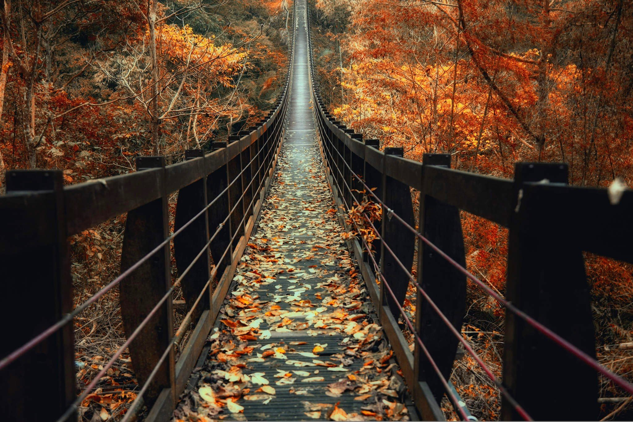 Full Screen Desktop Fall Leaves Wallpaper Nature Photography Landscape Fall Bridge Wooden