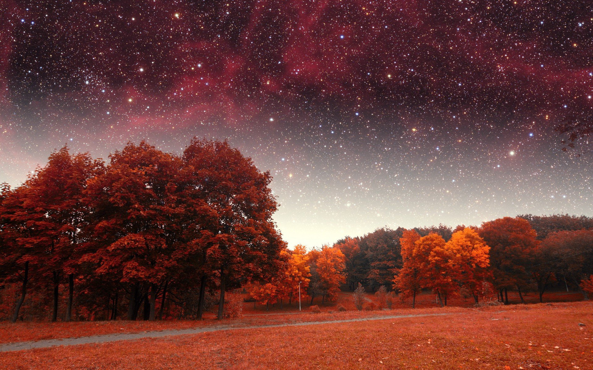 Free Full Screen Fall Wallpaper Stars Fall Hd Wallpapers Desktop And Mobile Images Amp Photos