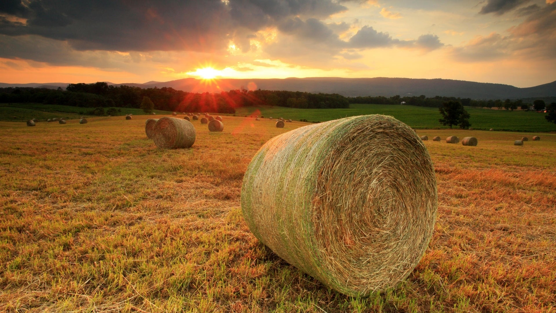Fall Landscape Wallpapers Free Hay Bales Hd 32988 1920x1080 Px Hdwallsource Com