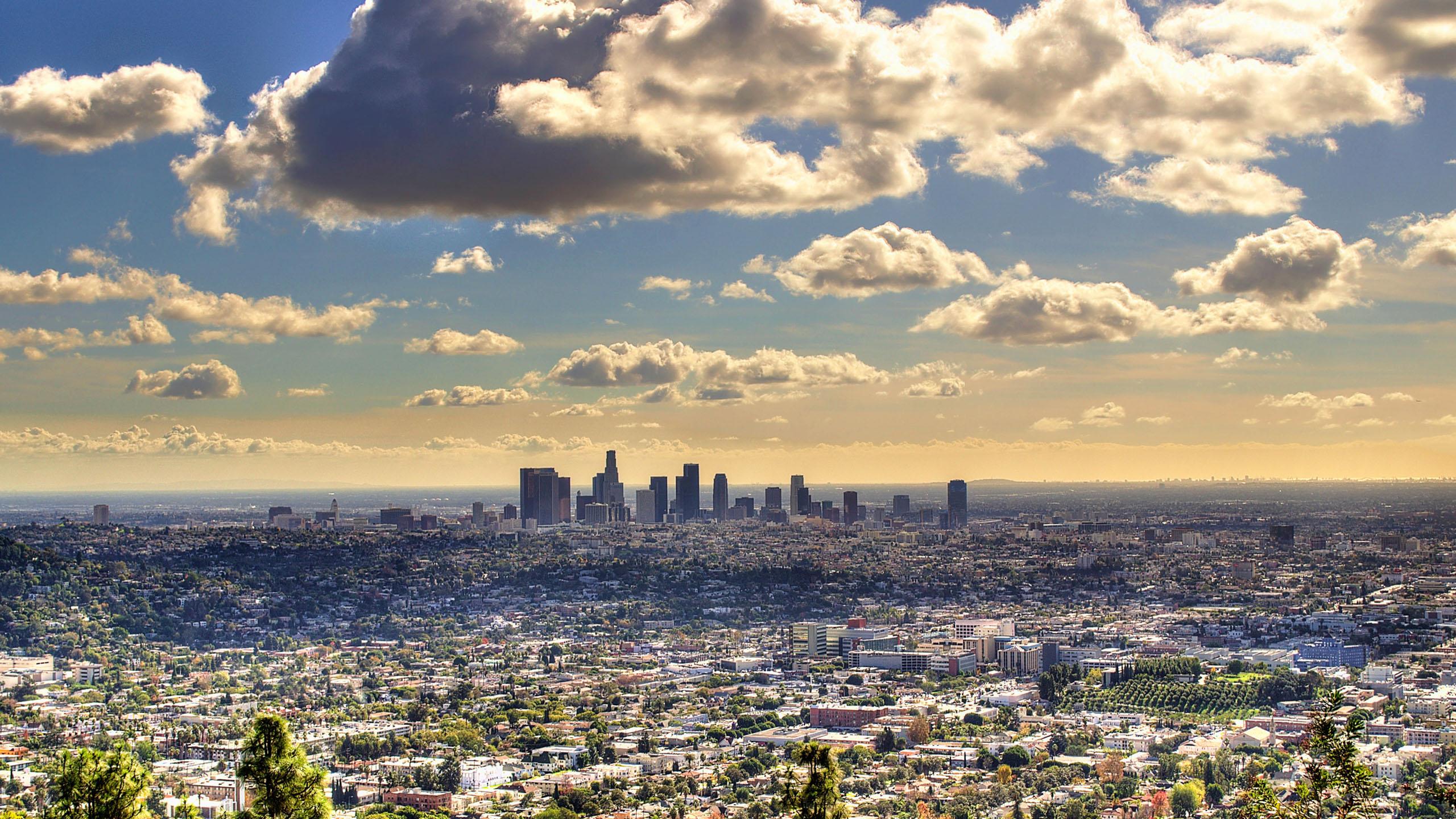 Wallpaper 3d Funny Fantastic Los Angeles Wallpaper 41391 2560x1440 Px
