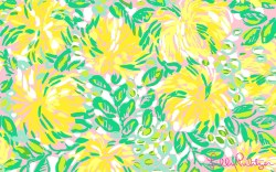 Small Of Lilly Pulitzer Patterns