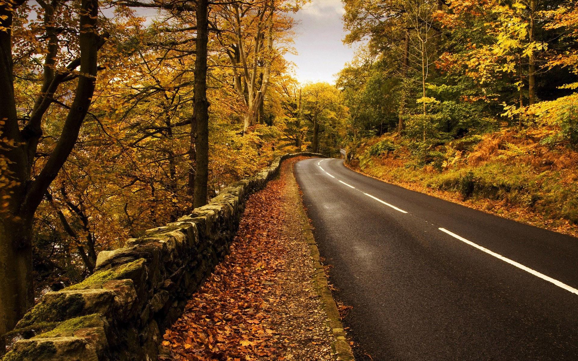 Smoky Mountains Fall Wallpaper Gorgeous Mountain Road Wallpaper 37802 1920x1200 Px