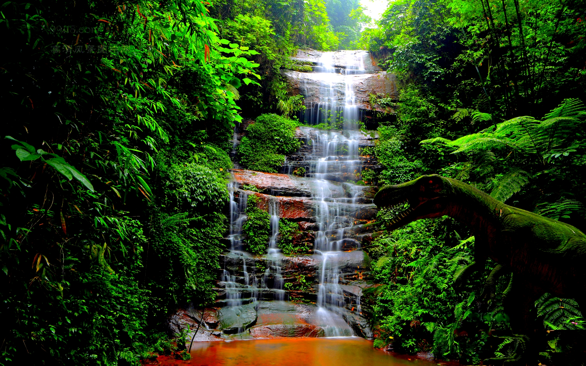 3d Live Waterfall Wallpapers Forest Waterfall Wallpaper 34054 1920x1200 Px