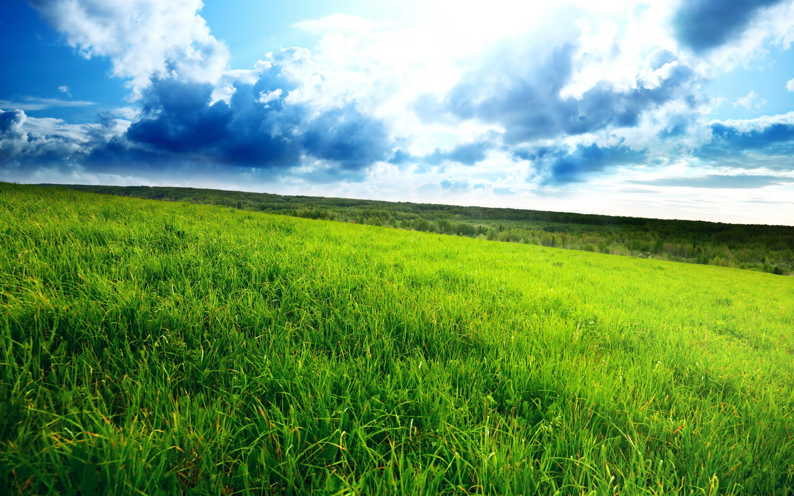 Islamic Quotes Hd Wallpapers Stunning Green Field 4094 Hdwpro
