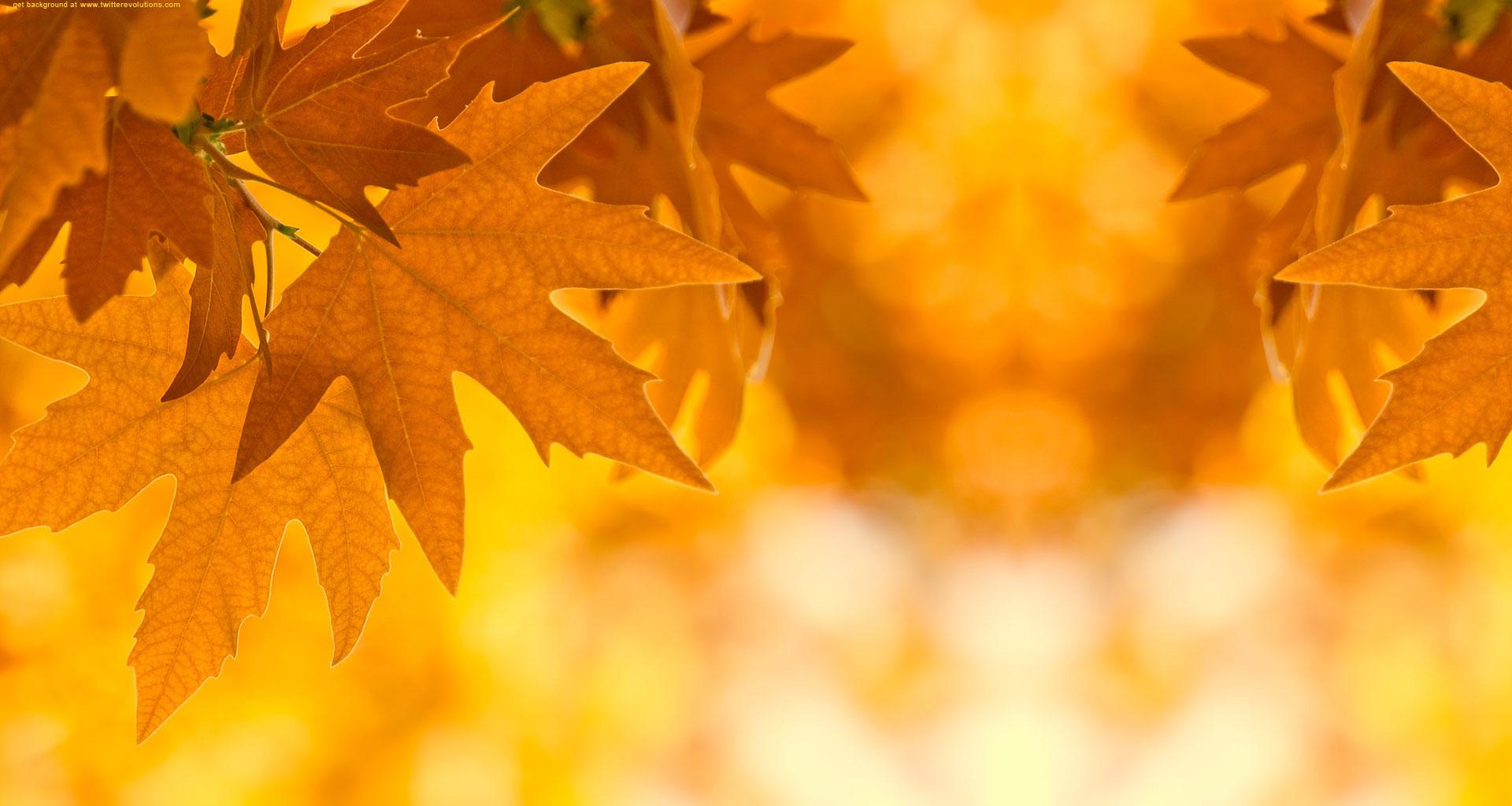 Hd Autumn Desktop Wallpaper Awesome Autumn Photo 12353 Hdwpro