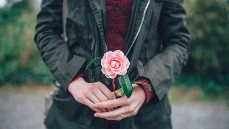 """dziewczyna z kwiatkiem - świt bez kolorów w książce """"Dawca"""""""