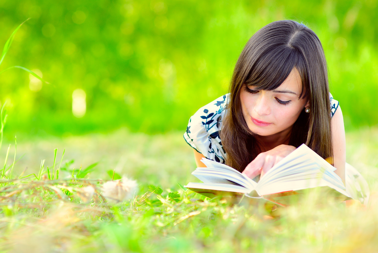 Girl In A Tree Reading A Book Wallpaper Books You Must Read Before The End Of The Year