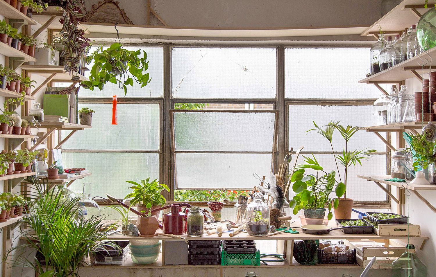 Designer Sofas And Curtains Tottenham Court Road In The Studio London Terrariums Heal 39s Blog
