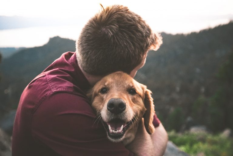 , The benefits of pet therapy