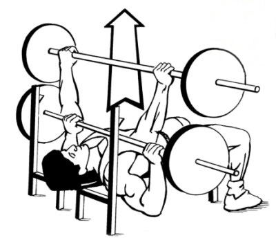 bench press 1,000,000,001 Different Ways to Train your Chest