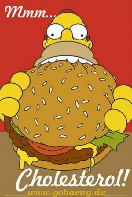 homer cholesterol OxyCholesterol...the most serious cardiovascular health threat of all?