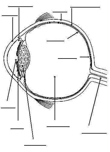 pschology of simple eye diagram