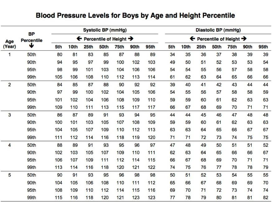 blood pressure tracker template