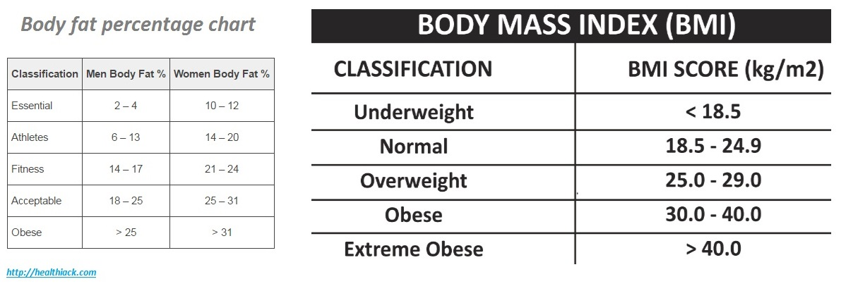 Body fat percentage calculator - body fat chart