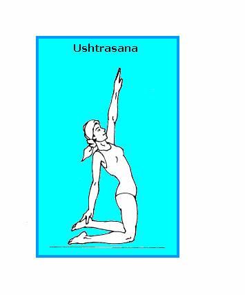 USHTRASANA