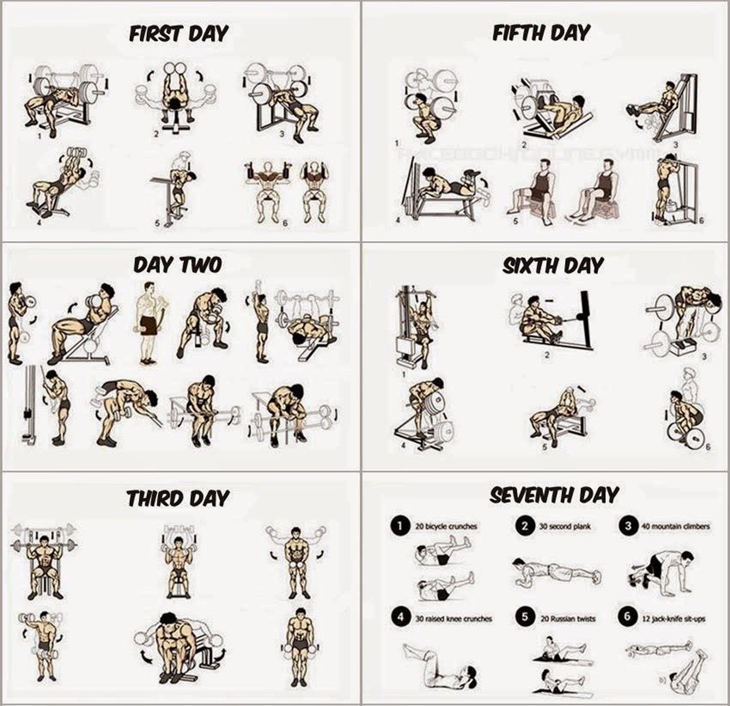 Gym Workout Chart For Chest For Men What Is The Best Workout Routine For Building Muscle
