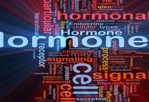 hormonal imbalance in women