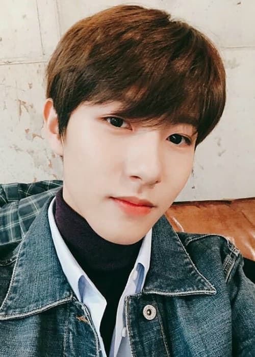 Best Color Hair Dye Brand Renjun Nct Height Weight Age Body Statistics