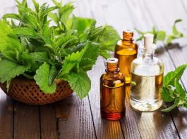 Peppermint-Oil-Health-Benefits