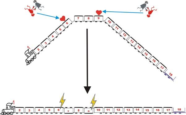 partial hydrogenation
