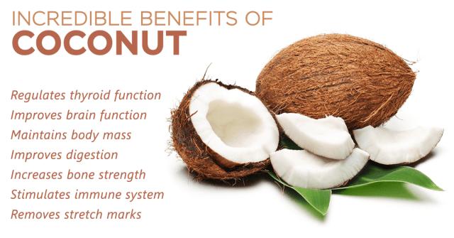 coconut useful plant