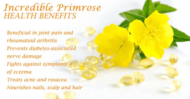 primrose benefits