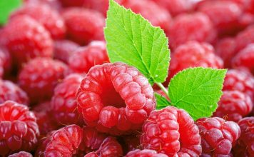 red raspberry benefit
