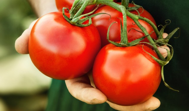 worst foods for you tomatoes