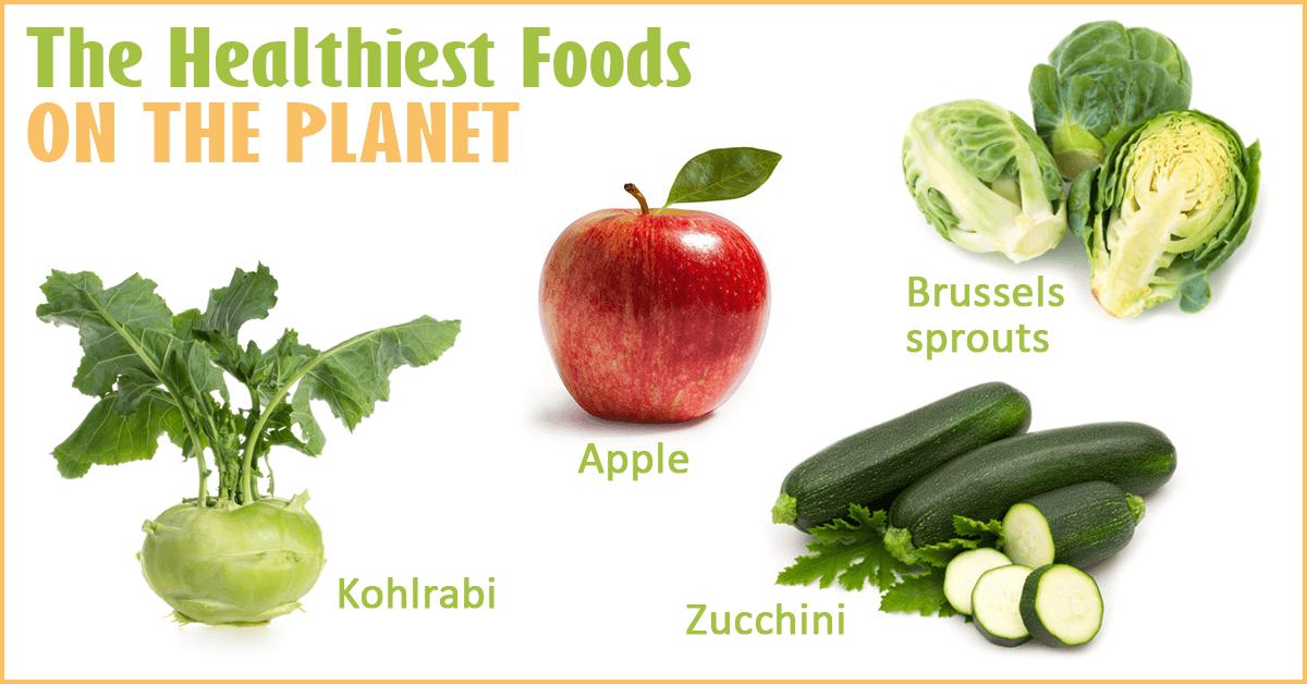 Top Healthiest Cat Foods