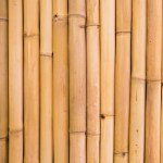 Environmentally Friendly Bamboo Household Products And Ideas