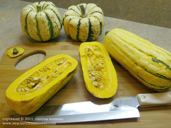 Cleaning Delicata squash