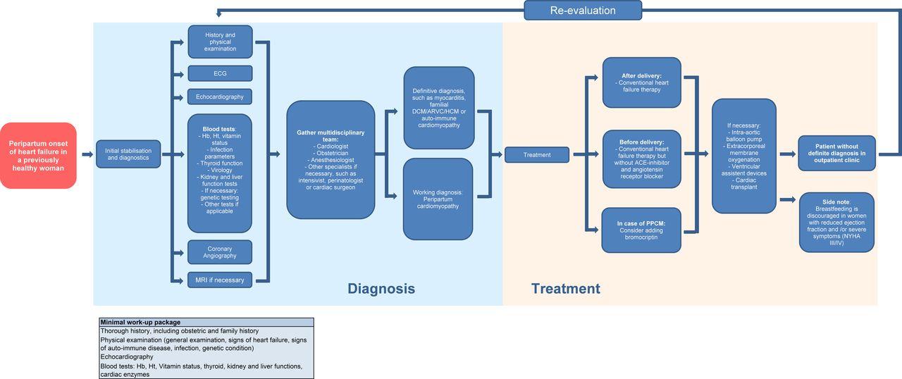 Peripartum cardiomyopathy disease or syndrome? Heart