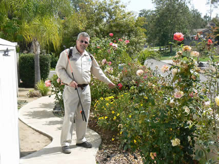 Landscape specialist identifying various plants.