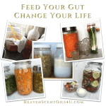 feed your gut INSTAGRAM