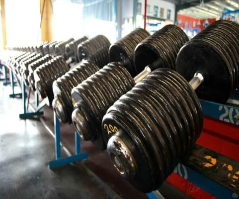 Muskelmasse, Hypertrophie, Massephase, Diät, Kaloriendefizit