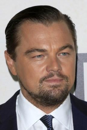 8. Leonardo DiCaprio: za vsak dolar, ki ga DiCaprio prejme kot plačilo, zasluži 9,90 dolarja za film.