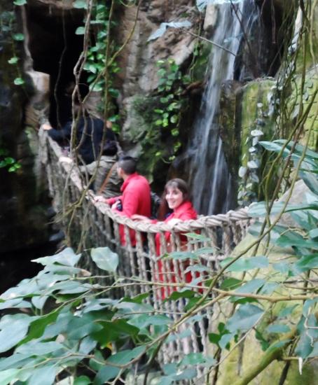 Henry Doorly Zoo & Aquarium Lied Jungle rope bridge