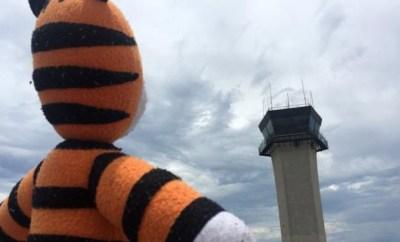 tampa bay airport lost stuffed animal