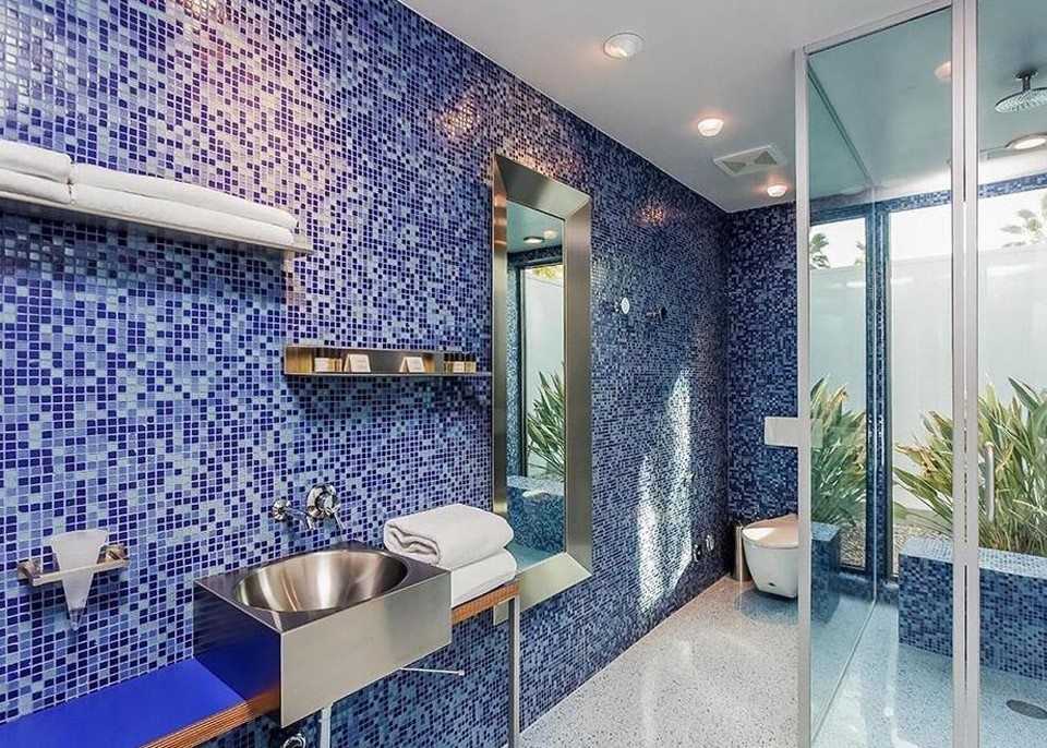 Leonardo DiCaprio's wife bathroom