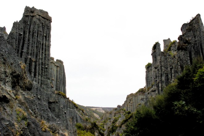 Pitangirua Pinnacles_2